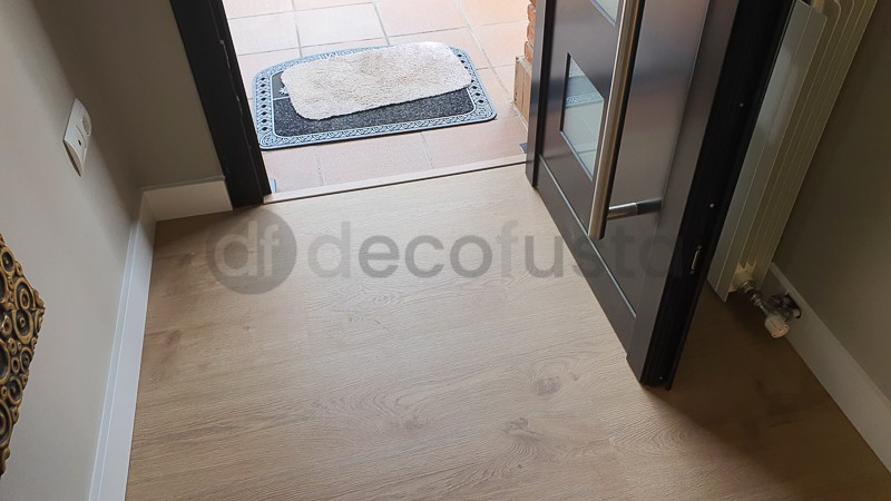 Entrada con puerta de aluminio