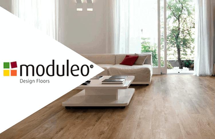 Diseño de moduleo