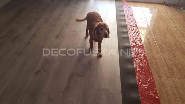 Este suelo laminado es ideal para mascotas